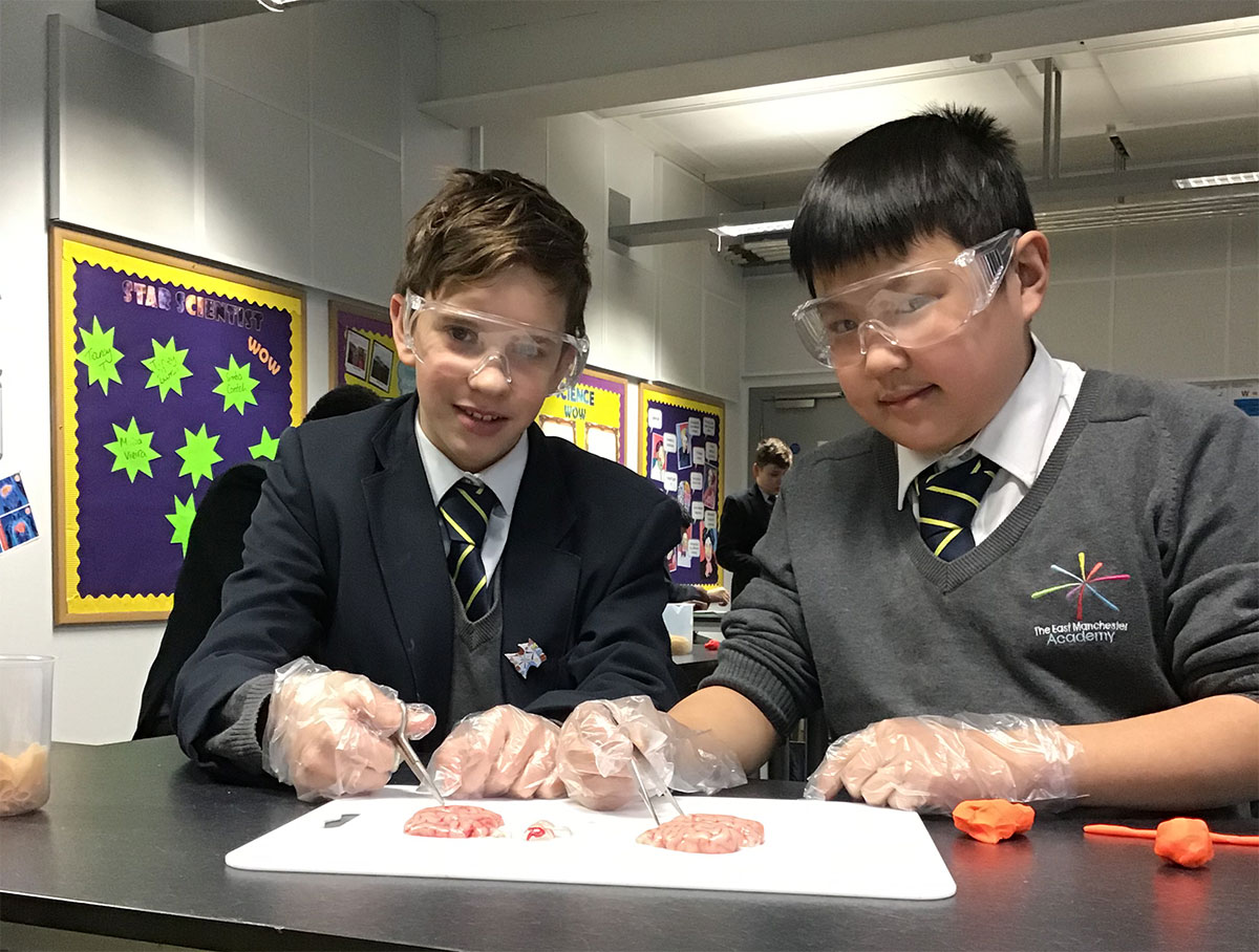 Students learning about the effects of drugs on the brain as part of Super Learning Day (February 2019)